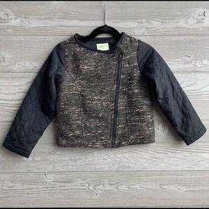 Asymmetrical zip jacket size 4T by Crazy 8